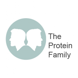 The Protein Family